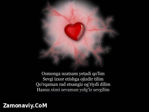 Siroj_19